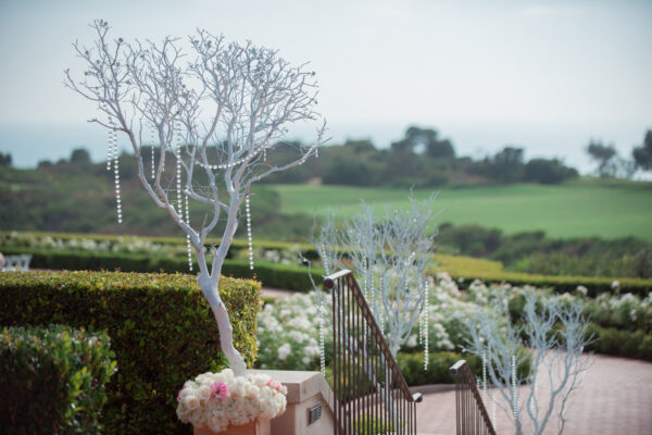 Chealsea and Jeff - Pelican Hill Resort Wedding (16)